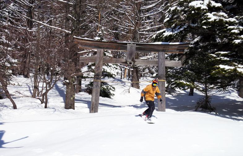 Skiing Shiga Kogen, Japan.