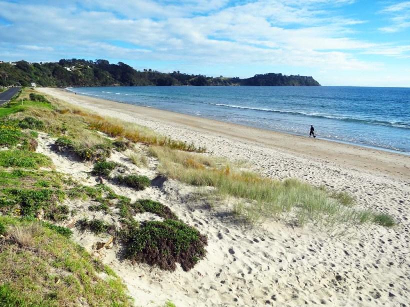 Onatange Beach, Waiheke Island, New Zealand